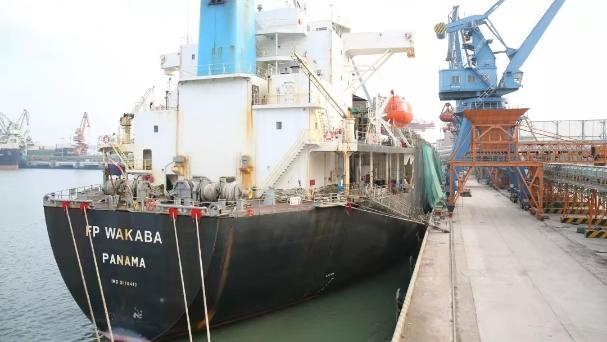 加拿大木片首次进口国内 日照港稳固全国第一大木片进口港地位